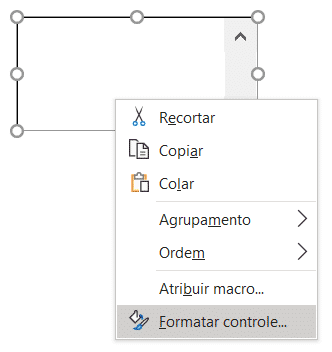 Formatar Controle