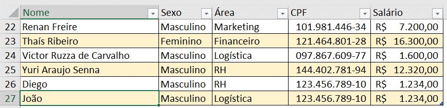Nova informação inserida na tabela - Formulário de Cadastro no Excel